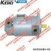 现货供应日本原装进口SQP21-21-6-86CD-18系列TOKYO KEIKI油泵