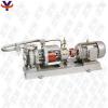 MT-HTP  高温磁力泵
