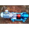 2CG系列  茁博高温齿轮泵,高温齿轮油泵,高温油泵,杂质齿轮泵