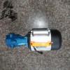 WCB手提式齿轮泵图片