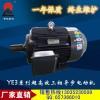 名优厂家供应YE2 YE3 Y2EJ Y2TS YV系列电机