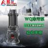 立式高扬程潜污水泵 污水污物潜水电泵 排污泵