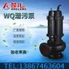 水泵厂家 工业区废水处理排污泵 立式无堵塞潜污泵图片