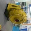 LXL型两相流纸浆泵图片